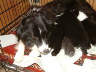 4月28日生まれの子供たち写真